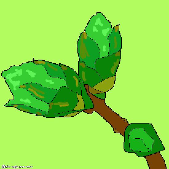 Un coloriage de printemps r alis par sophie - Dessin bourgeon ...