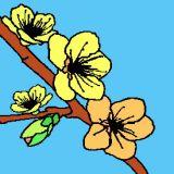 Dessin de bourgeons au printemps coloriages de printemps - Dessin bourgeon ...